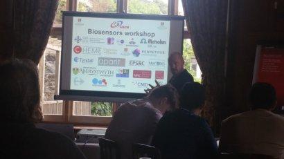 bisosensors workshop 2017